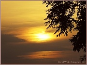 28th Jun 2012 - Sunset