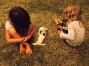 3rd Jul 2012 - girls best friend