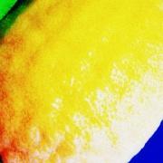 4th Jul 2012 - Yellow - Thumbnail challenge