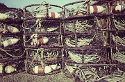 5th Jul 2012 - Crab Pots