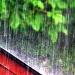 Rain, by iqscotland
