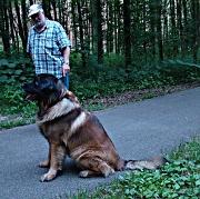 7th Jul 2012 - doggie