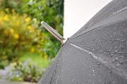1st Jul 2010 - Rain for the garden