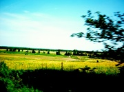 7th Jul 2012 - A drive by