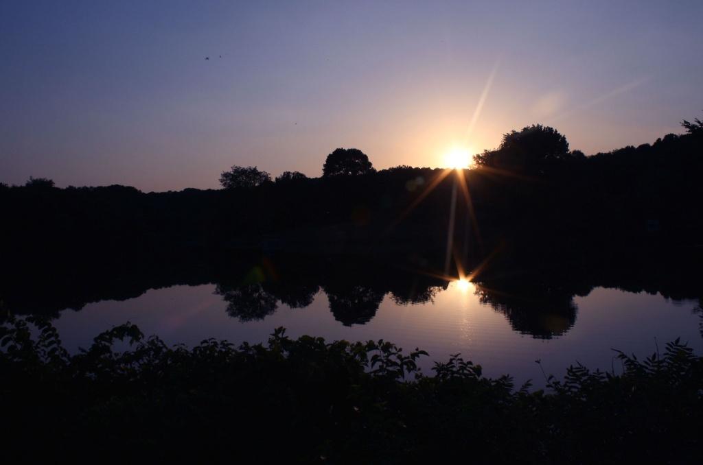 Summer evening by mittens
