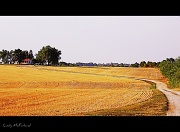 12th Jul 2012 - The Long and Winding Road