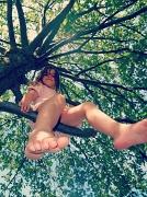 12th Jul 2012 - up a tree