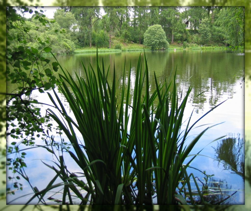 Loch Imrich by jmj