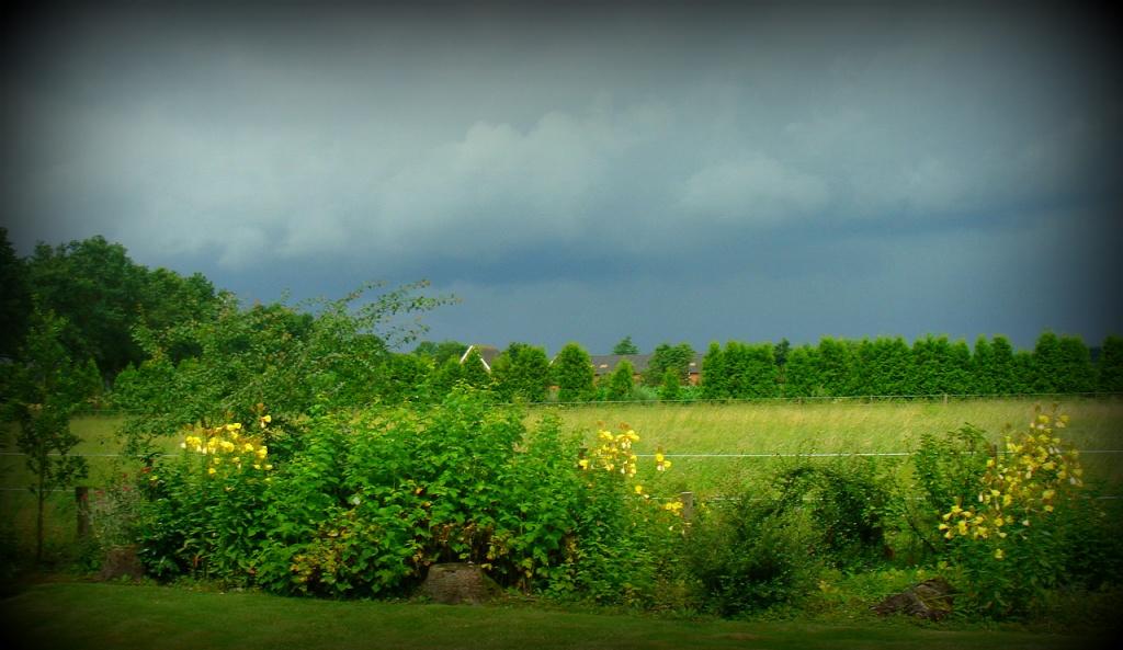 lowering clouds by gijsje