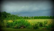 20th Jul 2012 - lowering clouds