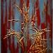 Alley Grass by kph129