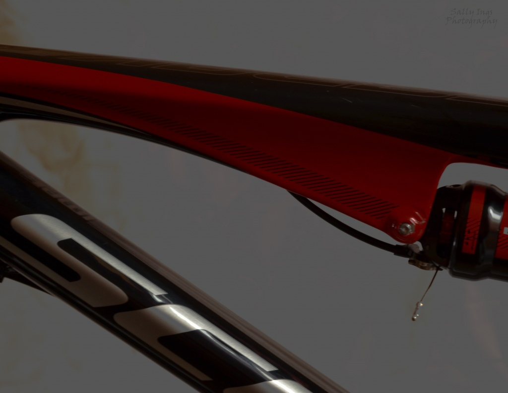 Bicycle Frame by salza