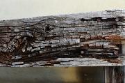 22nd Jul 2012 - Weathered Wood