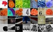30th Jul 2012 - Thumbnails