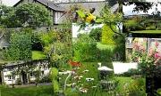 4th Aug 2012 - Cottage garden.