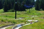10th Aug 2012 - Alpine Slide