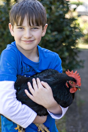 A boy and his chook..... by corymbia