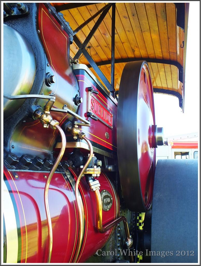 """Steam Engine""""SURVIVOR"""" by carolmw"""