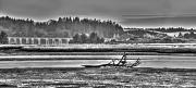 21st Aug 2012 - Black and White Panorama