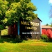 Mail Pouch Barn by yentlski