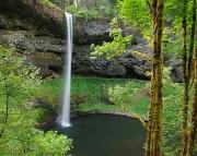 23rd Aug 2012 - Silver Falls, Oregon