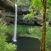Silver Falls, Oregon by vickisfotos