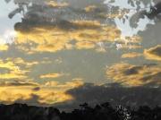 22nd Aug 2012 - Evening sky.