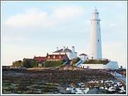 25th Aug 2012 - St.Mary's Lighthouse And Island