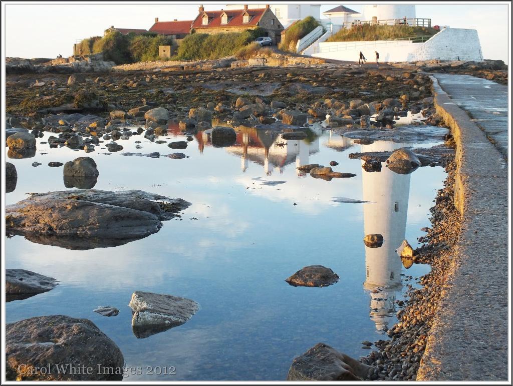 Reflections In A Rockpool by carolmw