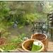 Rainy day by janturnbull