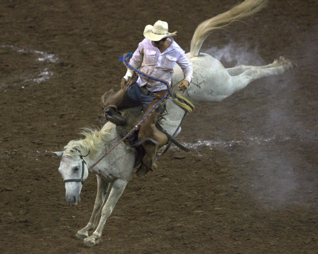 Ranch Rodeo by copperheadglass
