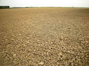 28th Aug 2012 - Ploughed and harrowed  , waiting for the sower