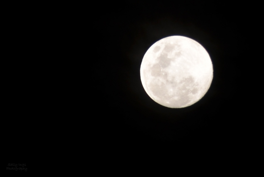 Almost Full Moon by salza