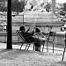 Reading in the Tuileries by parisouailleurs