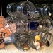 Spice Jars by bulldog