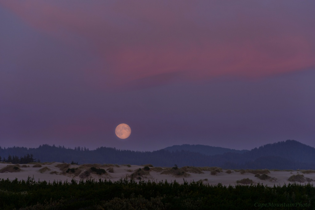 Blue Moon Rising Over the  Dunes by jgpittenger