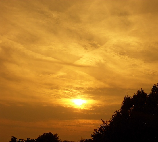 Sunset by berend