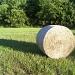 Hey! It's Hay by julie