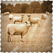 Sepia sheep by filsie65