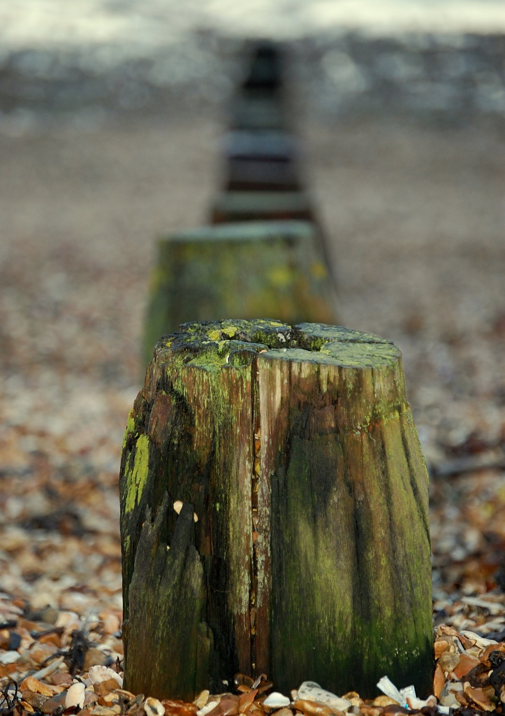 Groynes by andycoleborn