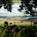 Daviot view by sarah19