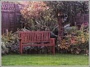 28th Sep 2012 - My Garden In The Rain