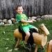 Ride em Cowboy by cdonohoue