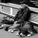 The beggar and his huge dog by parisouailleurs