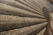 2nd Oct 2012 - Mosaic