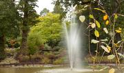 5th Oct 2012 - Slightly autumnal