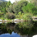 2012 10 06 Harold Porter Botanical Garden by kwiksilver