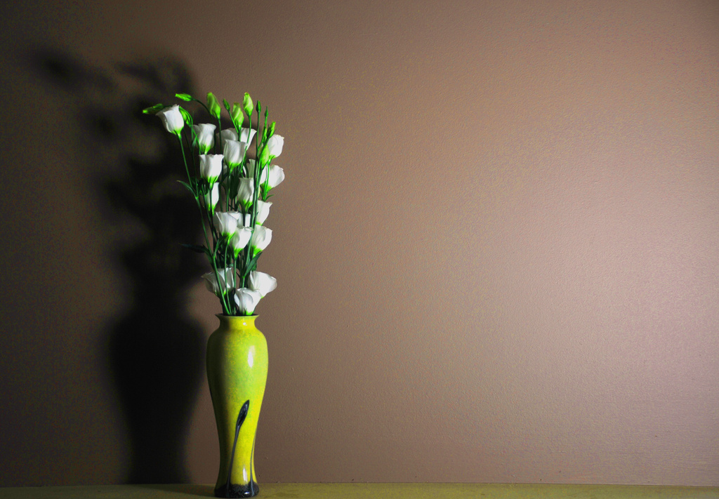 Lisianthus in vase with shadow by seanoneill