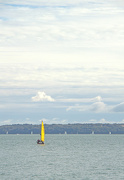 7th Oct 2012 - A touch of yellow