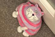 8th Oct 2012 - Meet Doorstop the cat